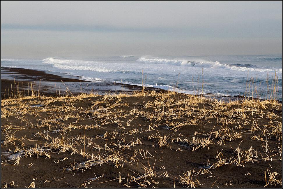 Берег Тихого океана. Камчатка