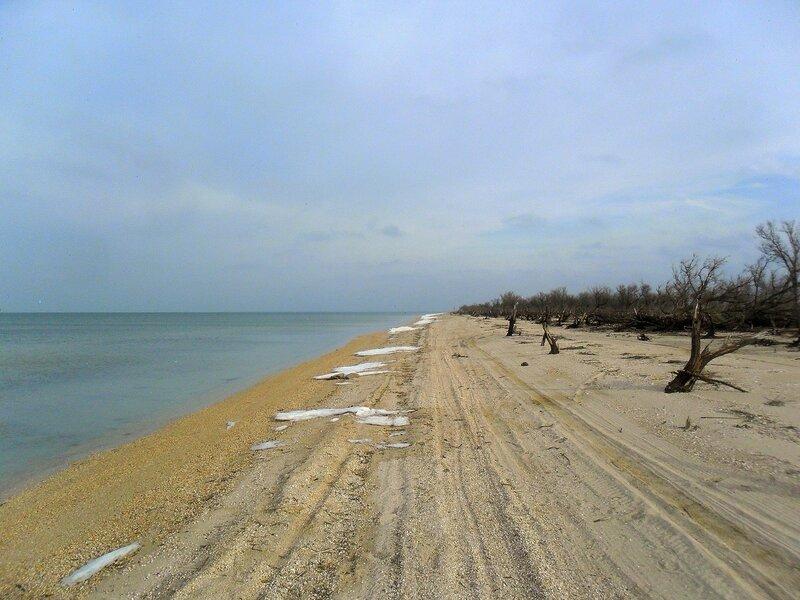 Зимний берег ... SAM_5633.JPG