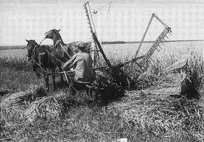 Сельские жители раннего СССР. 038.jpg