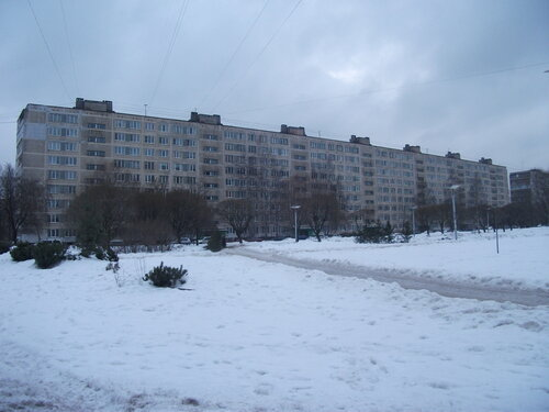 ул. Турку 23к1
