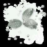 растения в снегу (3).png