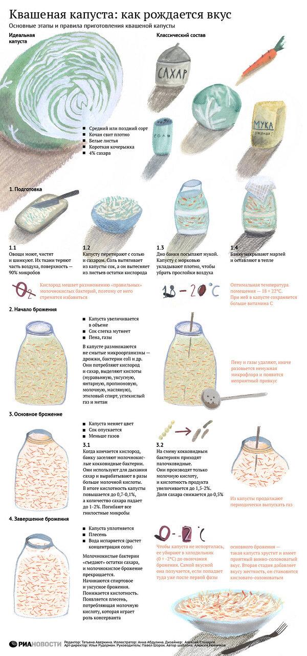 рецепт быстрого приготовления квашеной капусты в домашних условиях