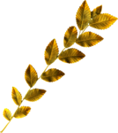 jsn_round4_mopb_leaves2.png
