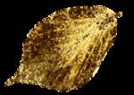 Gold Leaf_3.png