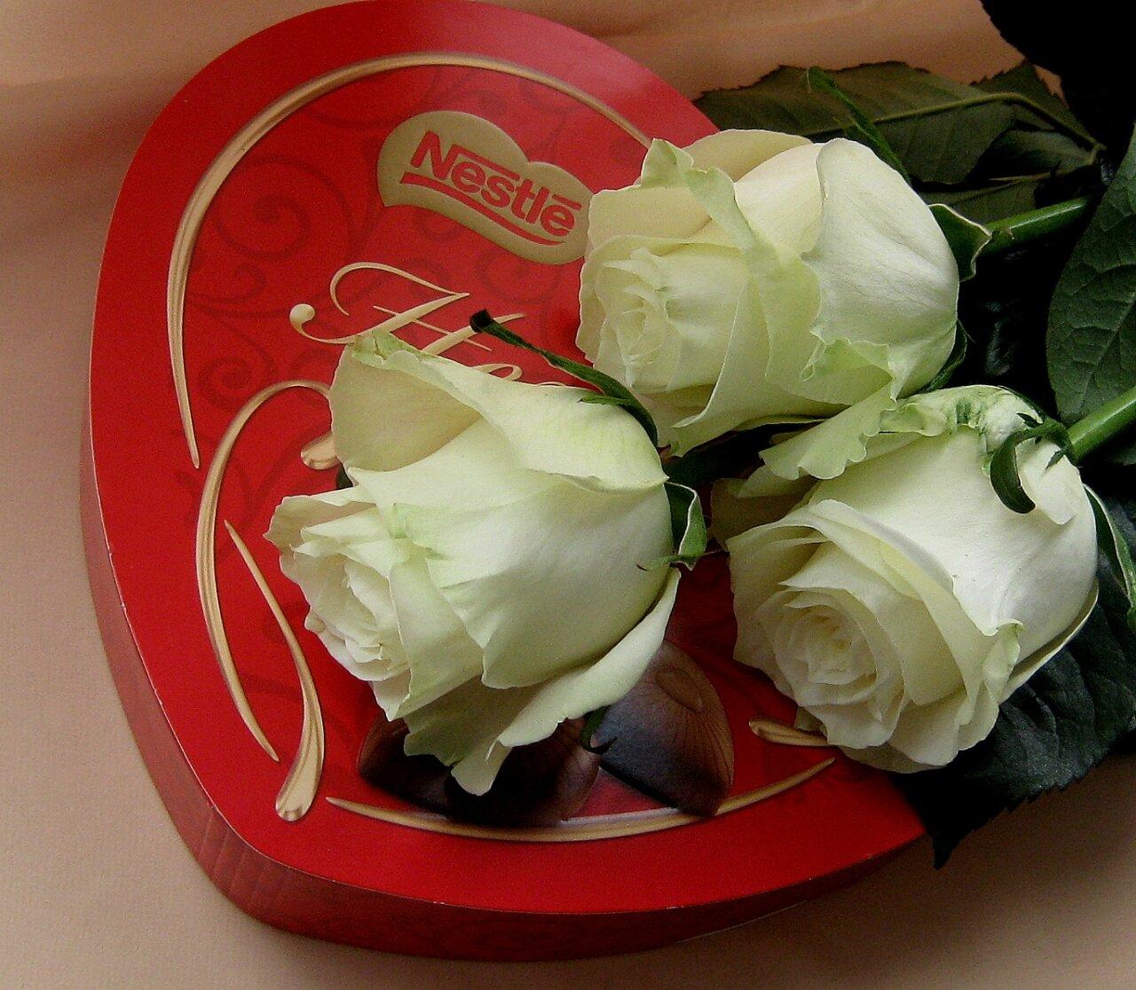 Открытки белые розы для любимой жены, библиотеки