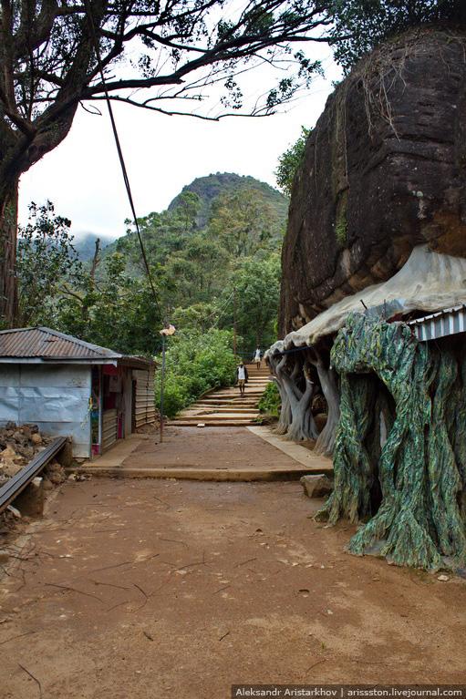 Шри-Ланка_Пик Адама_19