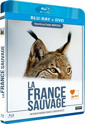 Дикая Франция