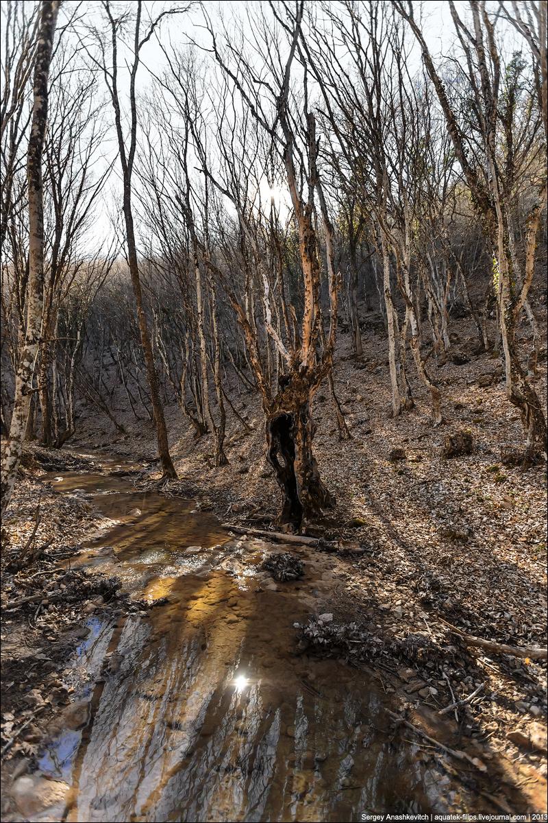 Весна на склонах Кубалар-Усту