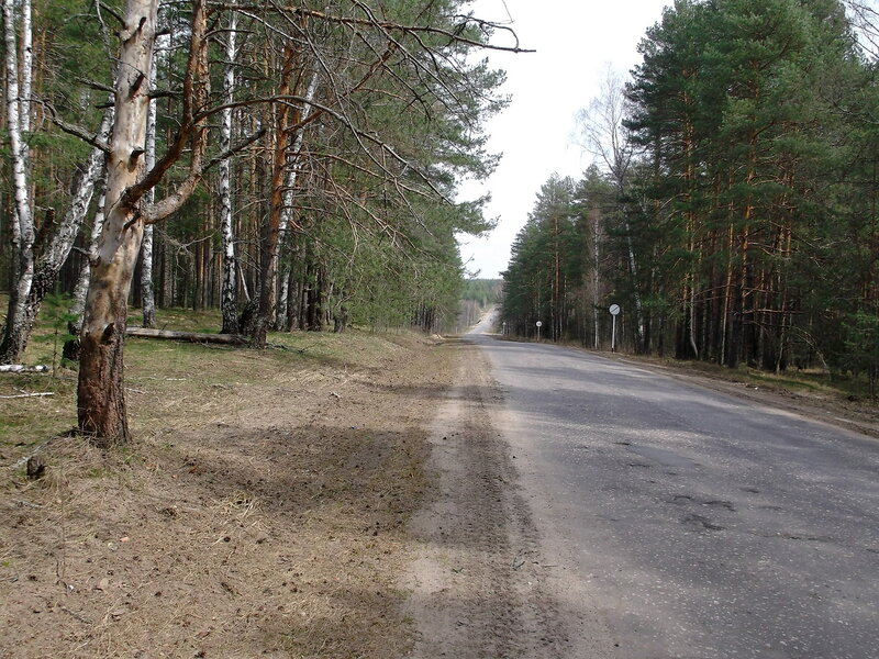 http://img-fotki.yandex.ru/get/6445/79794478.41/0_91244_803d9435_XL.jpg