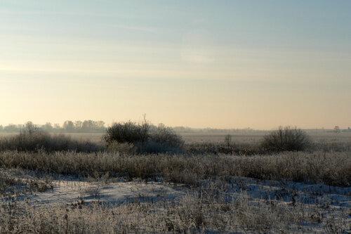 зимняя прогулка загородный морозец