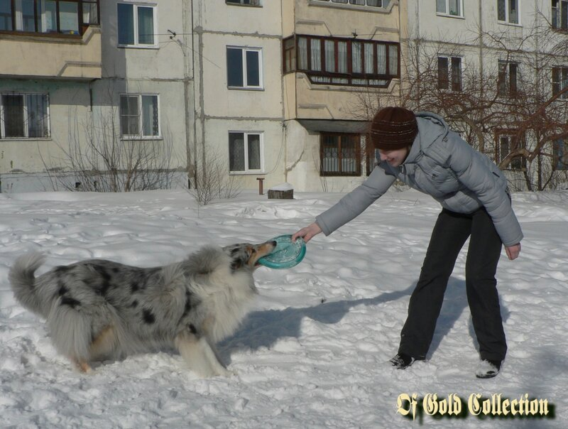 http://img-fotki.yandex.ru/get/6446/134559744.d/0_91523_94c865c2_XL.jpg
