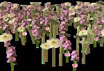 Lug_Grass_Flower (12).png