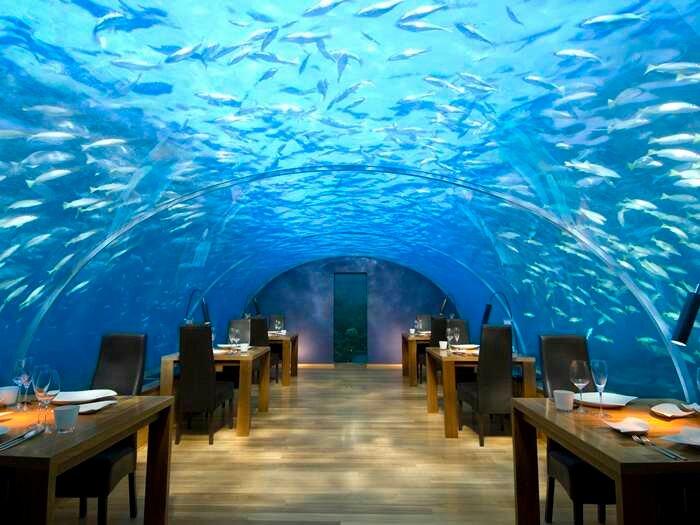 Мальдивы,отель,пляж,туры,спа,вилла