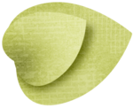 fayette-ofd-leaf.png