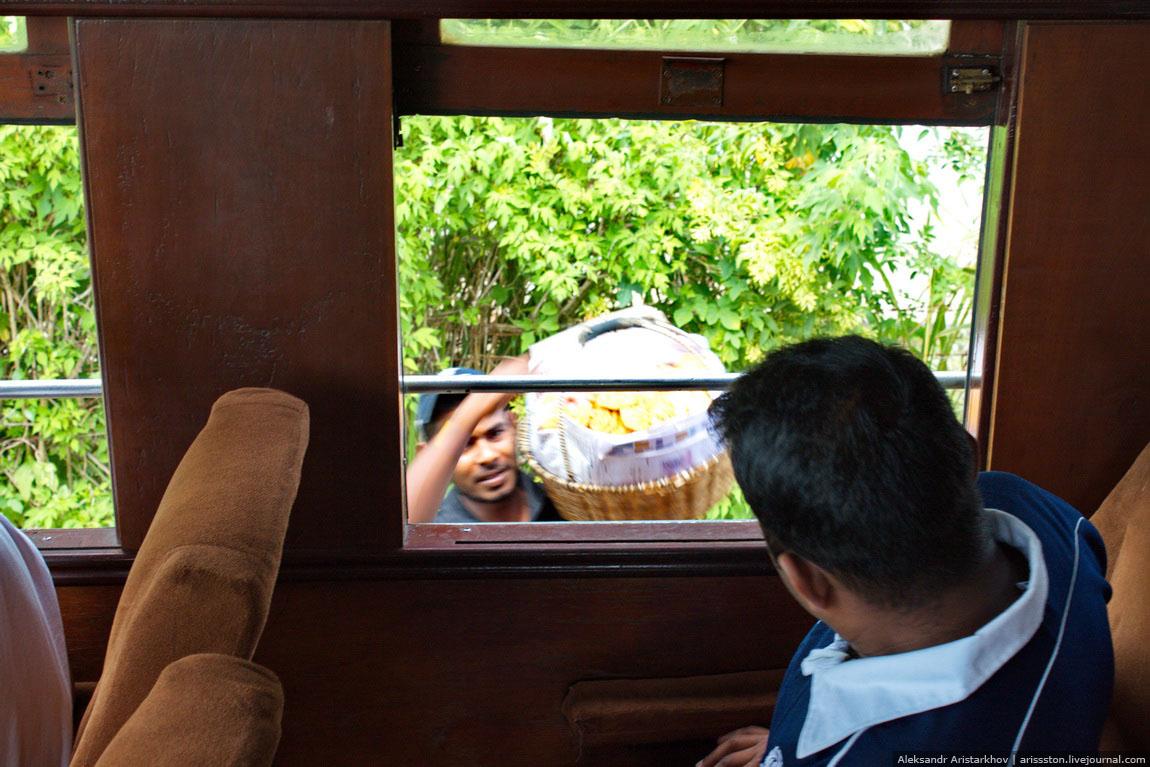 Шри-Ланка_Железная дорога_21