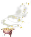 TurningLeafApothecary_LorieD_el (97).png