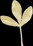 adelina_aliya_leaf.png