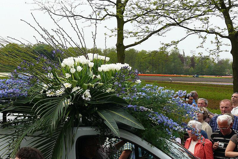 Парад цветов