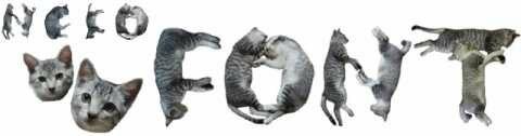 кото-шрифт, кавай разливной, котики, neko font