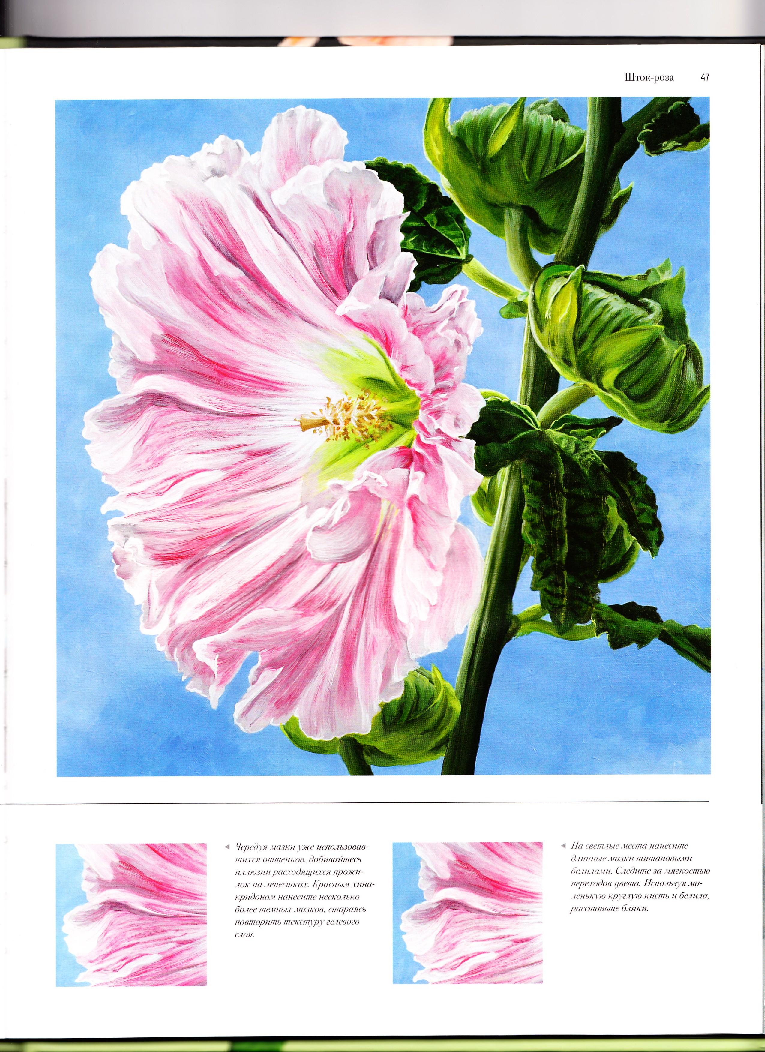 Нарисуй цветы акрилом по схемам