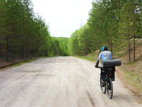 велосипедист с ребенком на дороге через лужский полигон