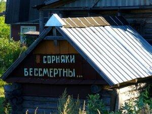 Внимание, конкурс! Сертификаты на приобретение садовой техники и инвентаря ждут дачников Владивостока