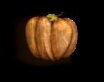 LottaDesigns_OldWorld_pumpkin_sh.png