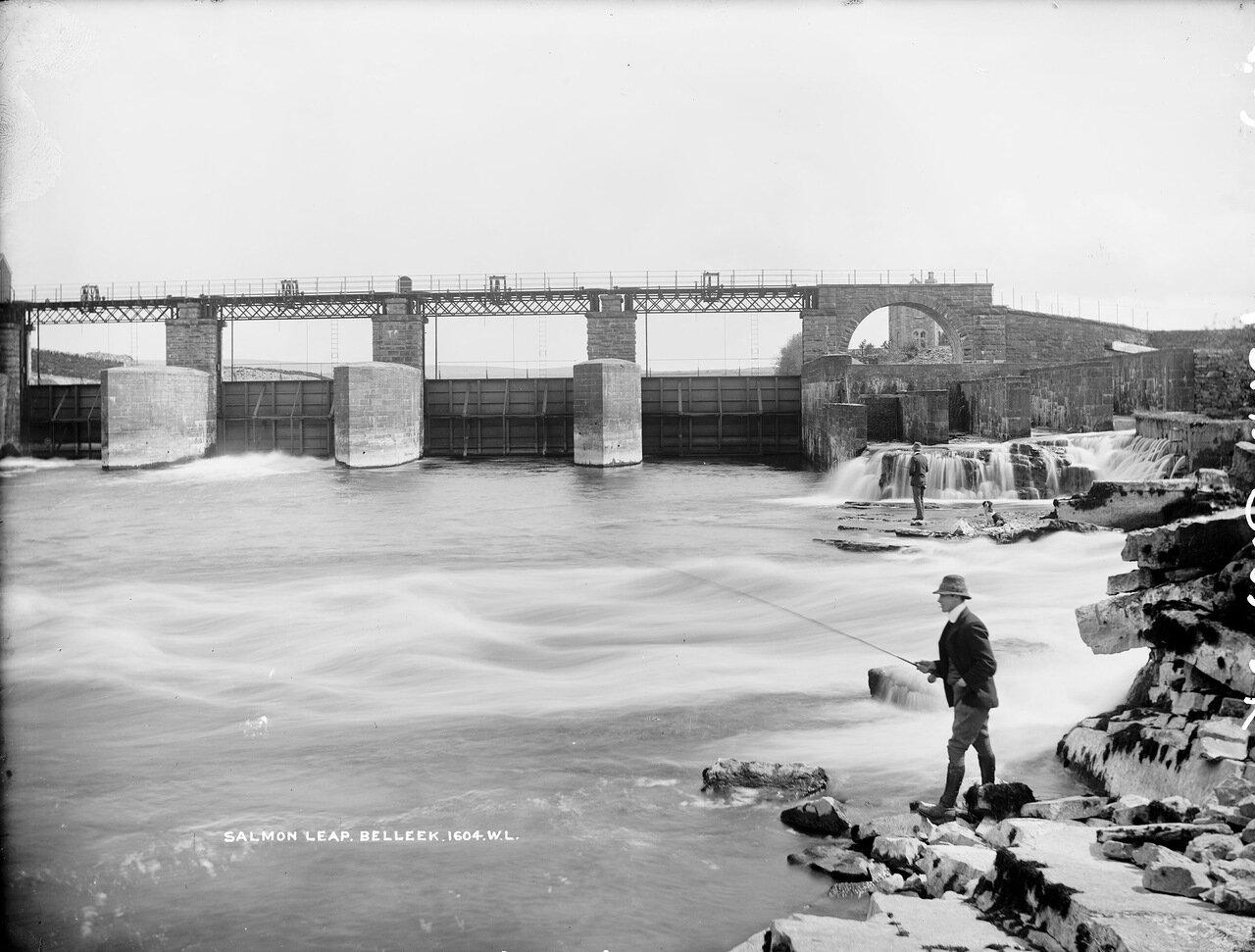 Прыжок лосося. 1897.
