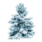adika_snow_forest_freebie (6).png