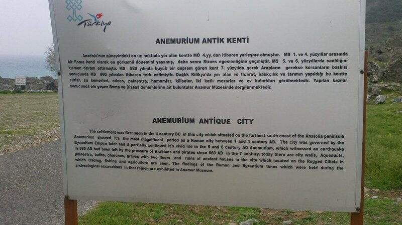 Анамуриум/Anemurium