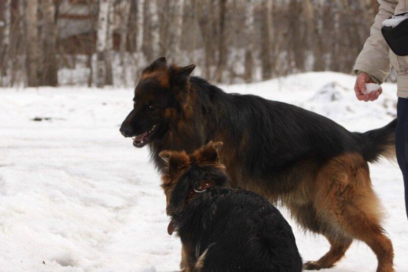 http://img-fotki.yandex.ru/get/6447/164684781.23/0_ae789_39a78fa2_XL.jpg