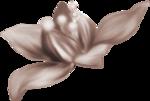 saskia_enapesanteur (9).png