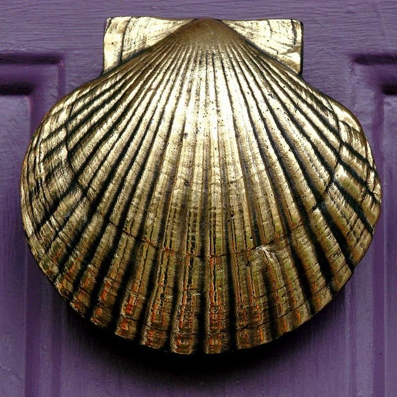 2. Ракушка Дверная ручка-кнокер в виде красивой золотистой ракушки.