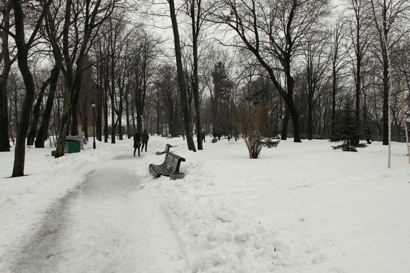 Дорожка Хрещатого парка под снегом