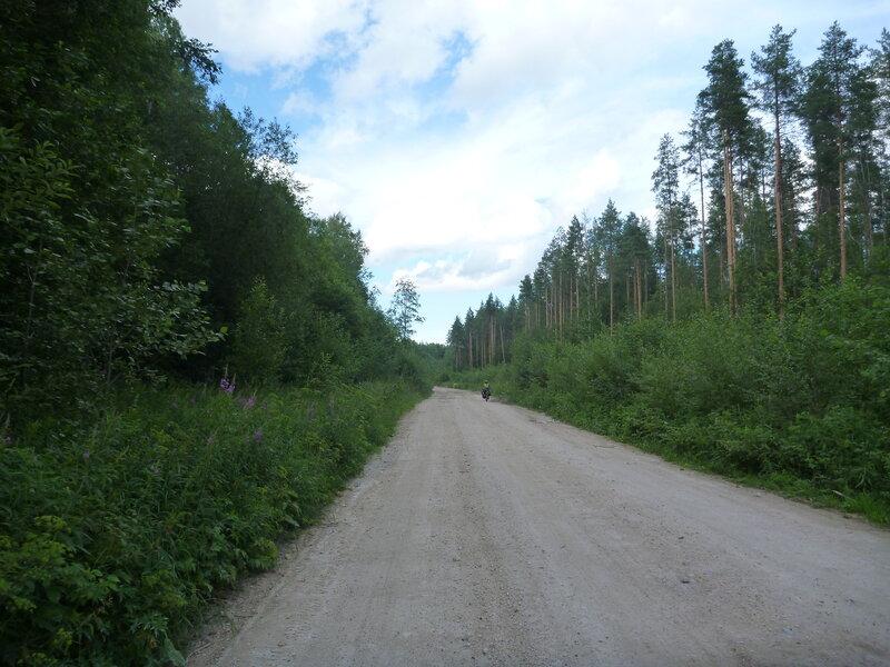 дорога в Красную Лягу