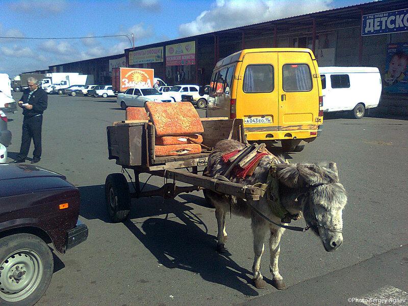 Экологический транспорт
