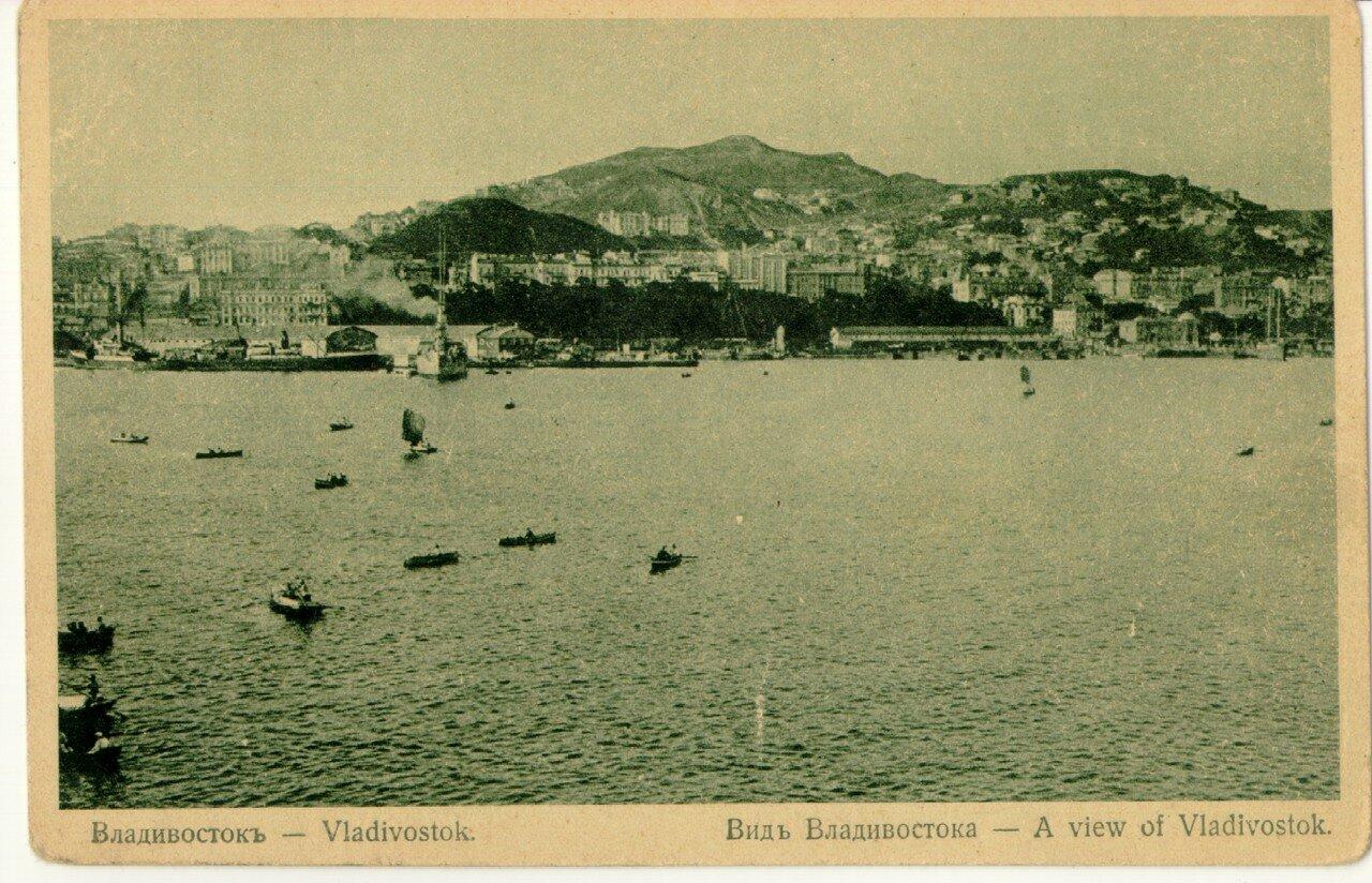Вид Владивостока