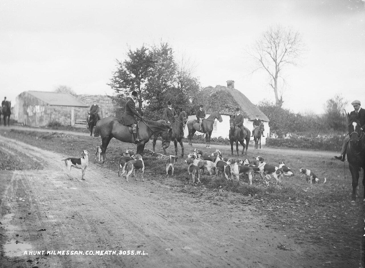 Охота в Килмессане, графство Мит. 1900.
