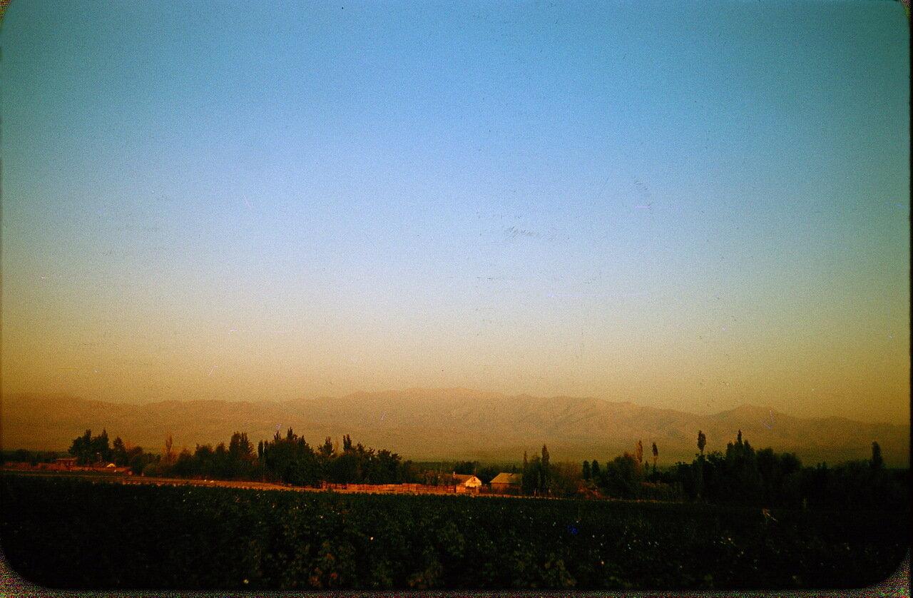 40. Сельская местность возле Ташкента. На заднем плане - горы Тянь-Шаня