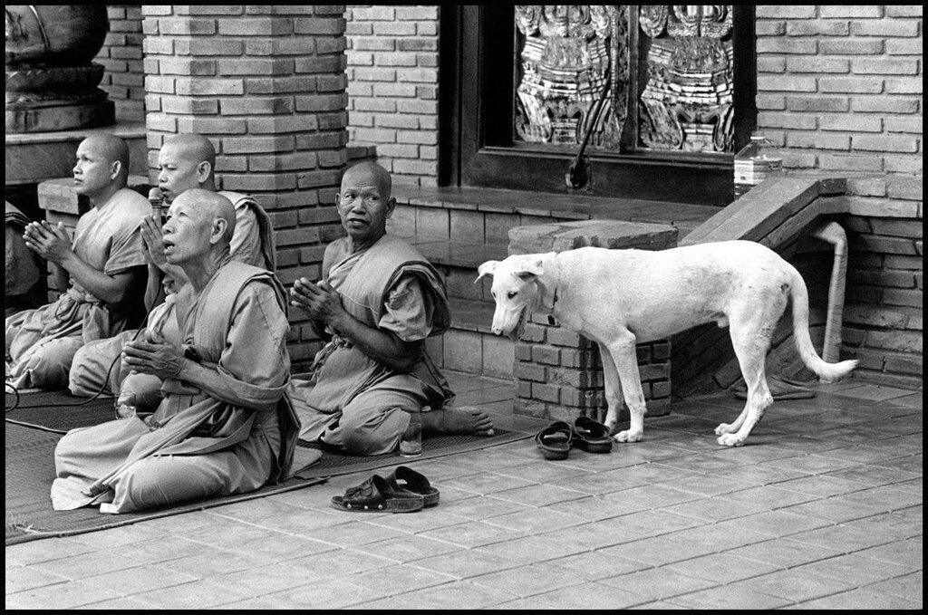 Ayutthaya, THAILAND. 1998.jpg
