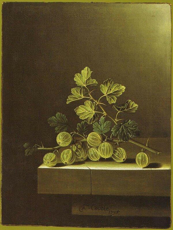 Adriaen_Coorte_-_Green_Gooseberries_on_a_Stone_Plinth.jpg
