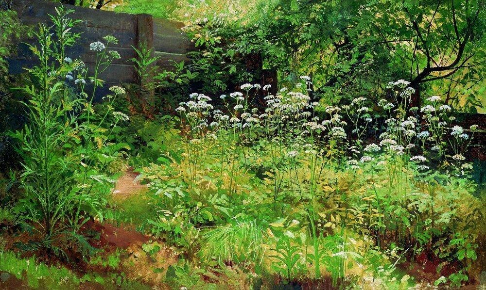 Сныть-трава.Парголово 1884-1885 35х58,5.jpg