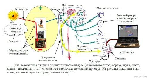 http://www.iper1k.ru