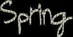RR_SpringFling_Element (17).png