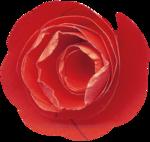 Spring_Florals_WendyP_el (32).png