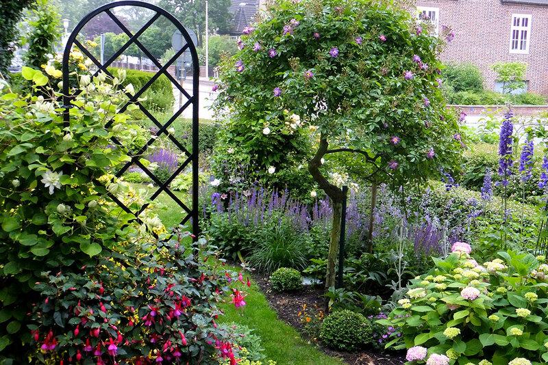 Шпалера в саду.