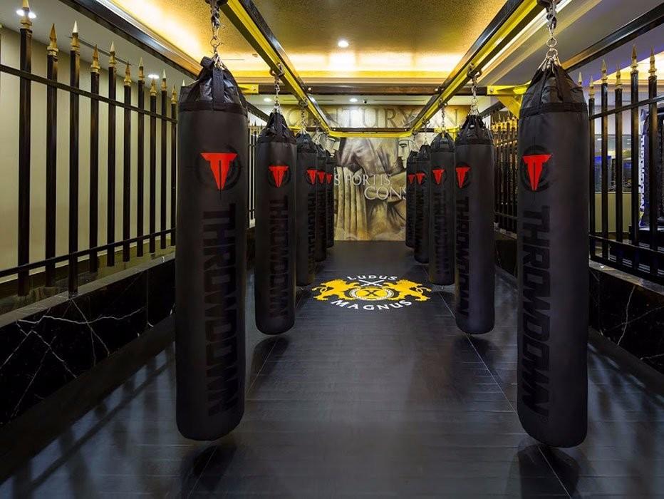 Здесь можно поработать над навыками бокса.