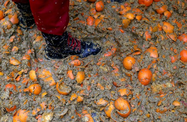 A member of a rival team stands in the middle of the square covered with oranges during an annual ca