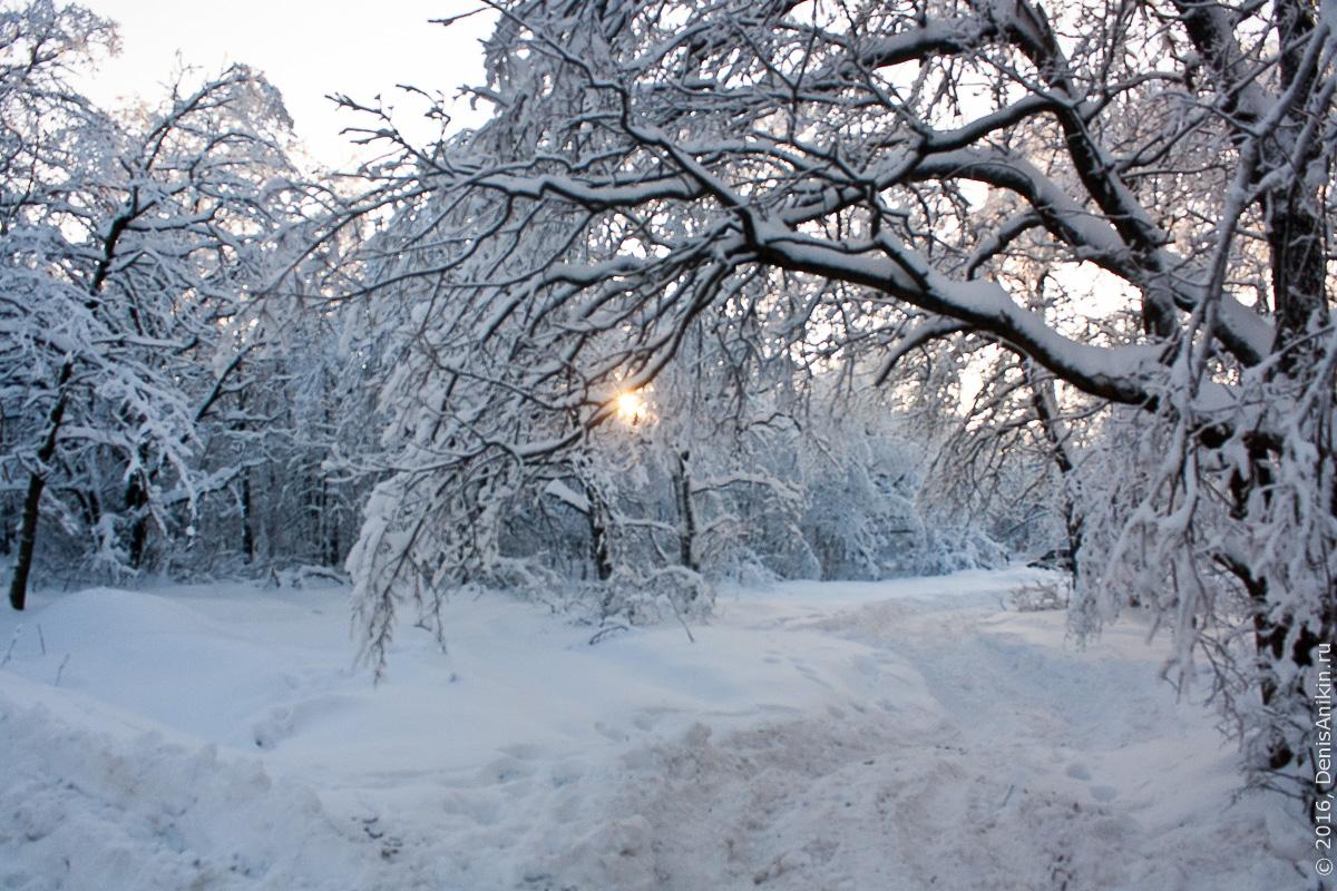 Зима на кумысной поляне 6