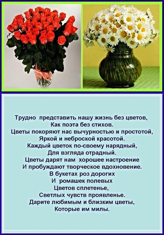 Цветы - радость для души!
